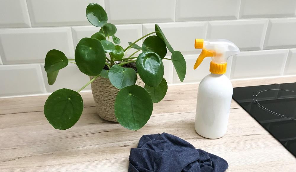 Nettoyant multi-usages maison